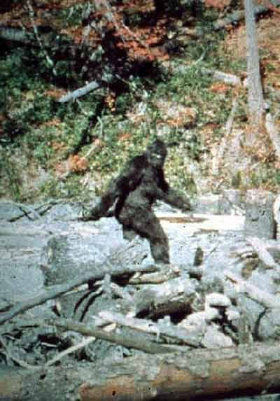 Bigfoot_Is_Real