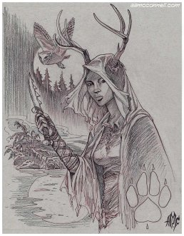 13thage_druid2016_amcc